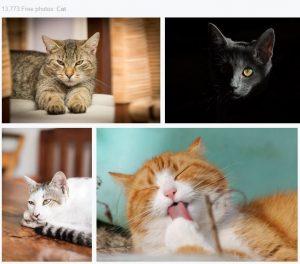 cara mencari bahan gambar untuk mentahan picsay pro keren dan berkualitas 2