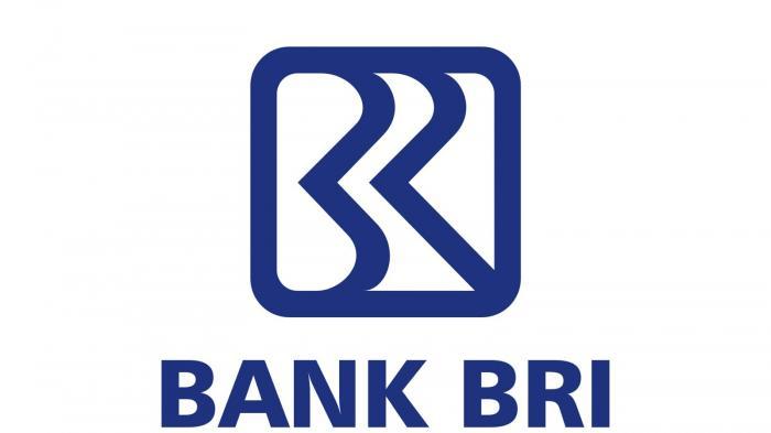 Cara Top Up Saldo OVO Lewat Transfer ATM Semua Bank bri